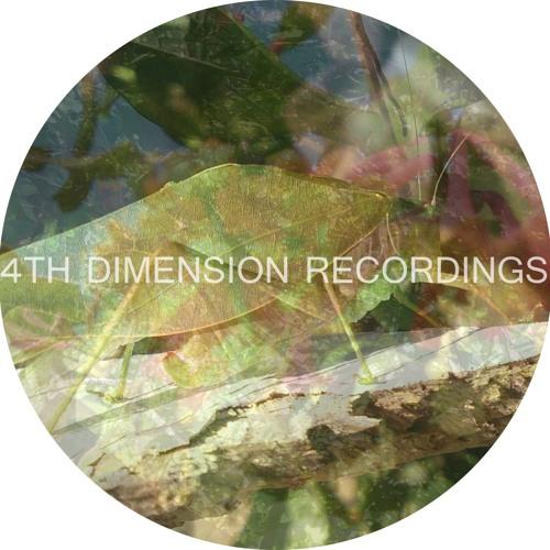 4thDimensionRecordsPromo's avatar