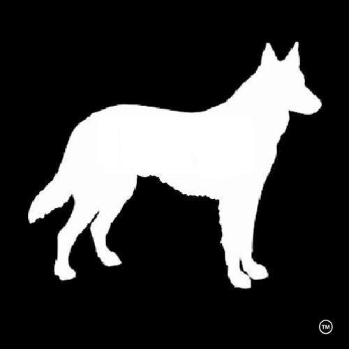 MVPBS's avatar