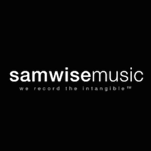 samwisemusic's avatar
