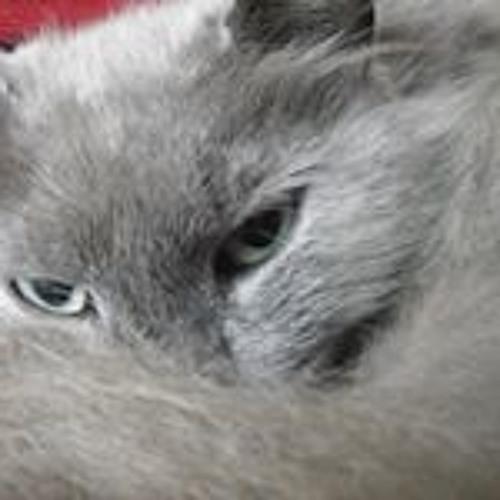 Nicki Bray-Brown's avatar