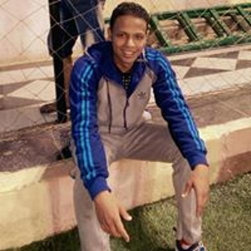 Mohamed Hamada Elshaer's avatar