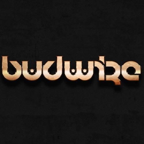 BVDWIZE's avatar