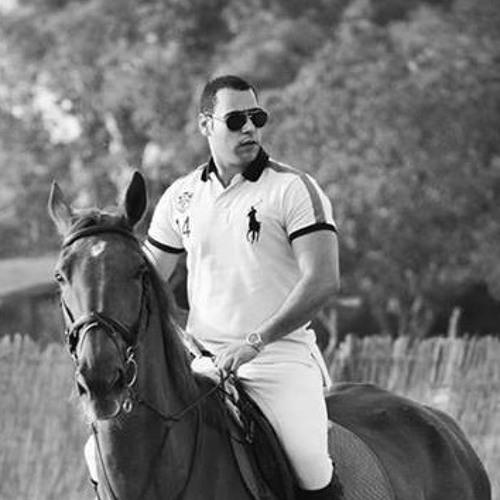 Kareem Abu Zeid's avatar