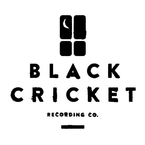 Black Cricket RecordingCo's avatar