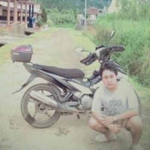 Krisnando Surya Pratama's avatar