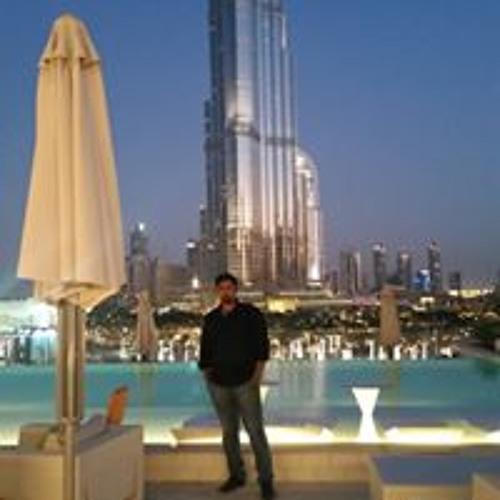 Amir Shamsudhien's avatar
