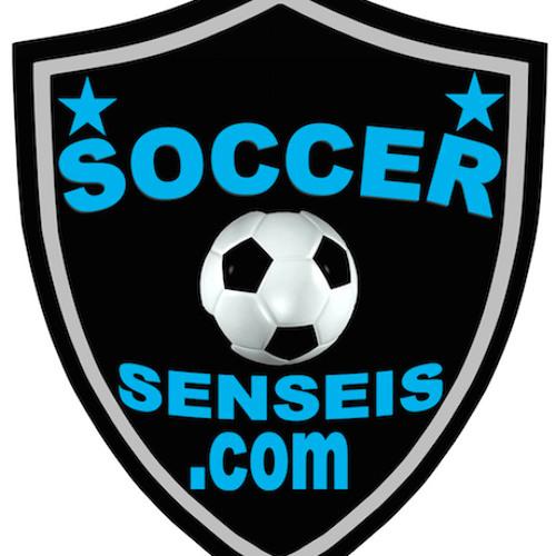 soccer senseis's avatar