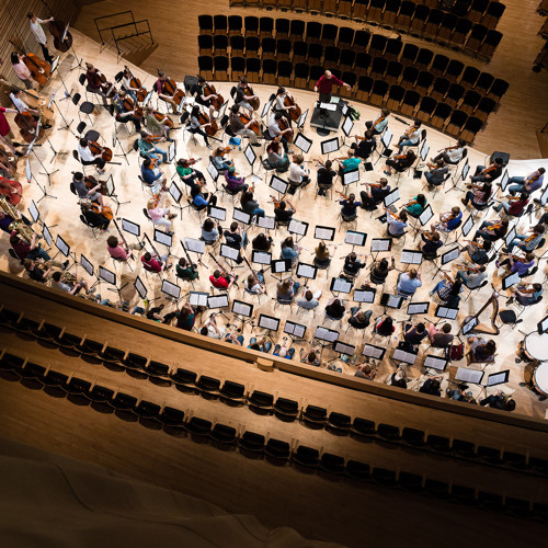 Rensselaer Orchestra's avatar