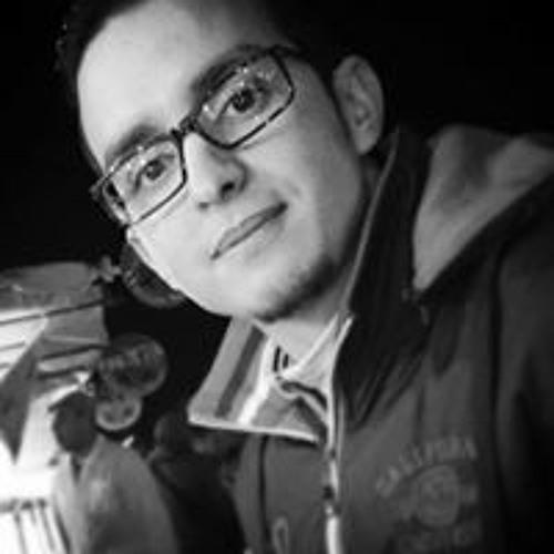 Mahmoud Lotfi's avatar