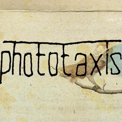 Phototaxis's avatar
