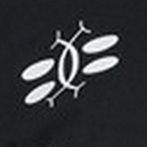 quinn c's avatar