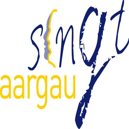 aargausingt - www.akgv.ch's avatar