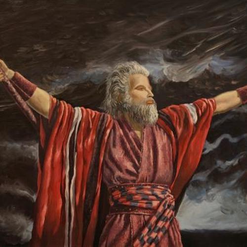 WindBreaker Moses's avatar