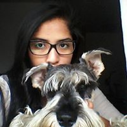 Camila Rodriguez Galvez's avatar