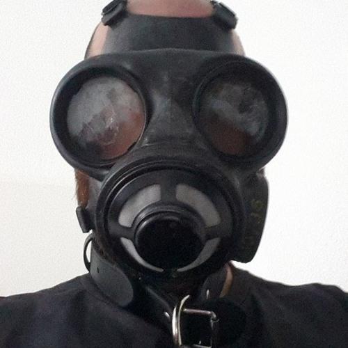 Moni Krausz's avatar