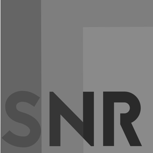 SN-R's avatar