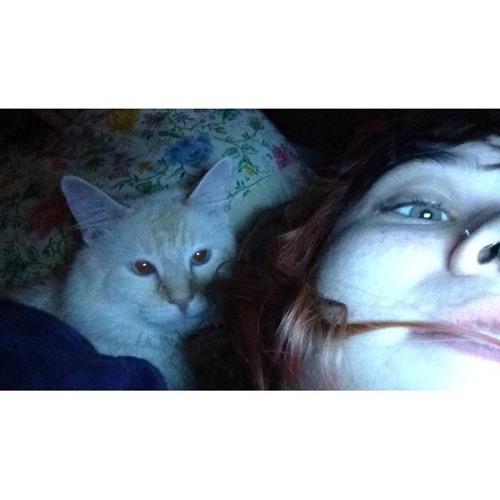 kel~c's avatar