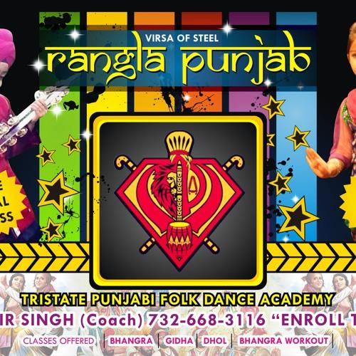 Rangla Punjab Academy's avatar