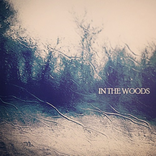 In The Woods's avatar