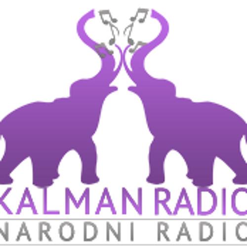 Kalman radio's avatar