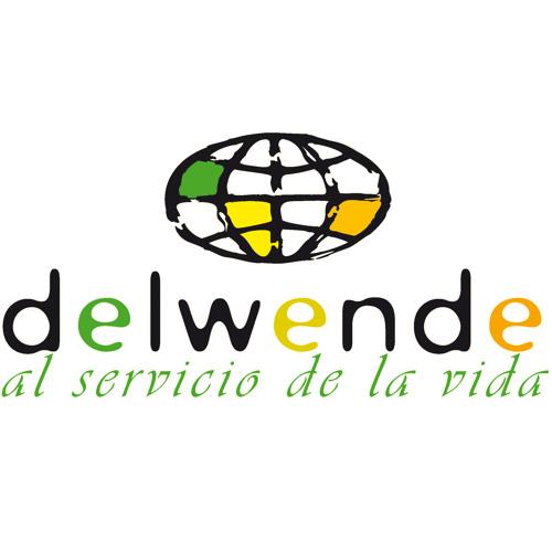 Delwende ONGD's avatar