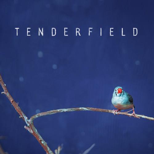 Tenderfield's avatar