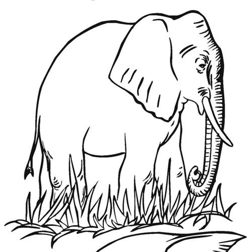 Baska Gajah's avatar