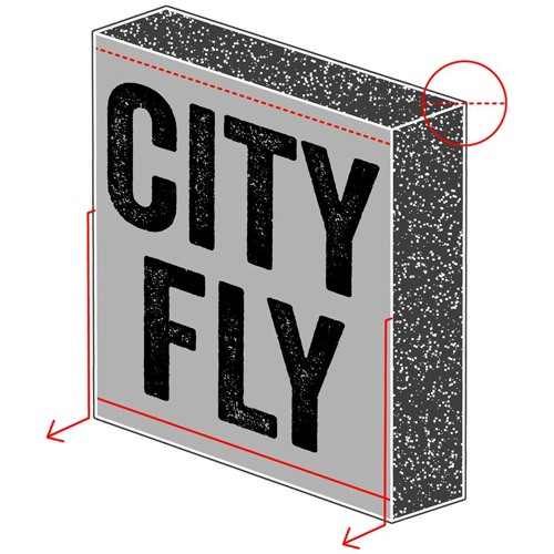 City Fly's avatar