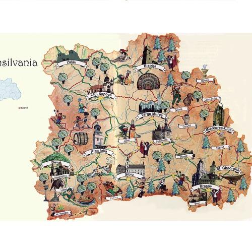 Transilvania Repo's avatar