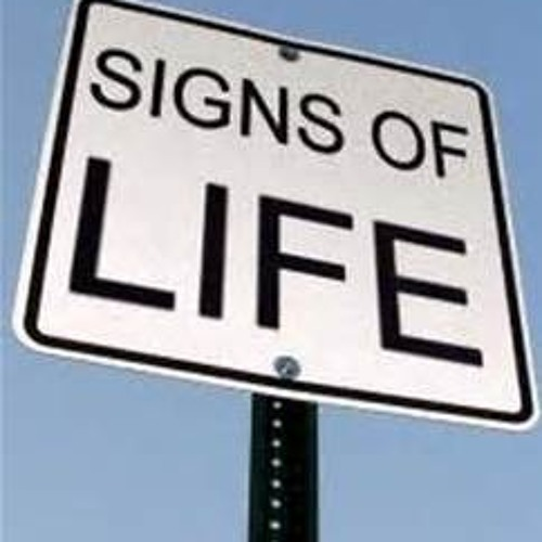Signs of Life's avatar