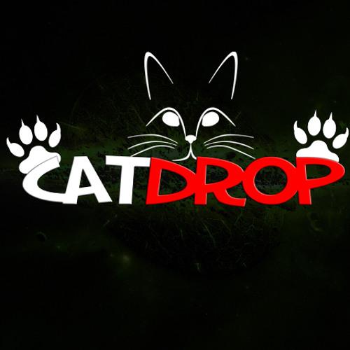 ♬ CatDrop ♬'s avatar