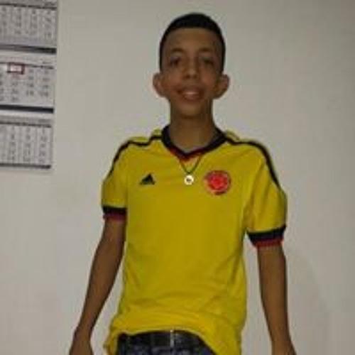 Gustavo Andrade Llanos's avatar