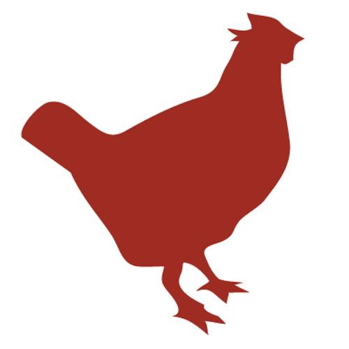 Kung Fu Chicken's avatar