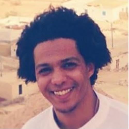 Ahmed Midany's avatar