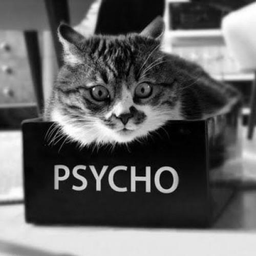Psycho★Cat's avatar