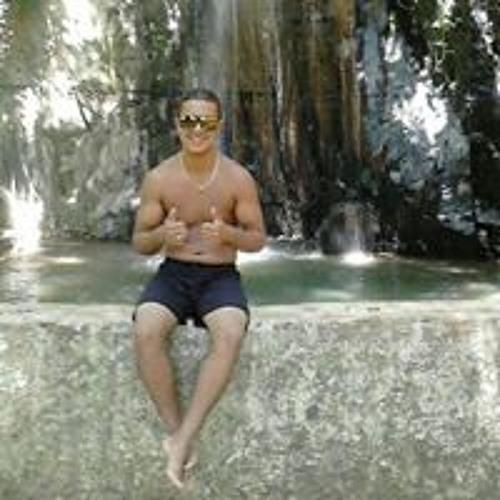 Marcelo Gabriel's avatar