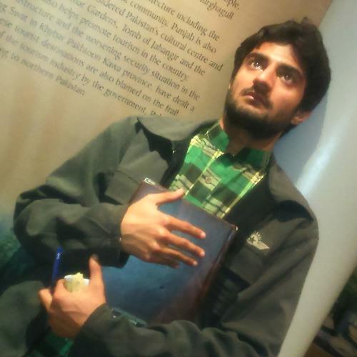 Fanaa Chand Sifarish: Afzaalranjha's Likes On SoundCloud