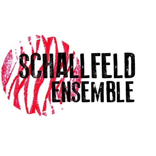 Schallfeld Ensemble's avatar