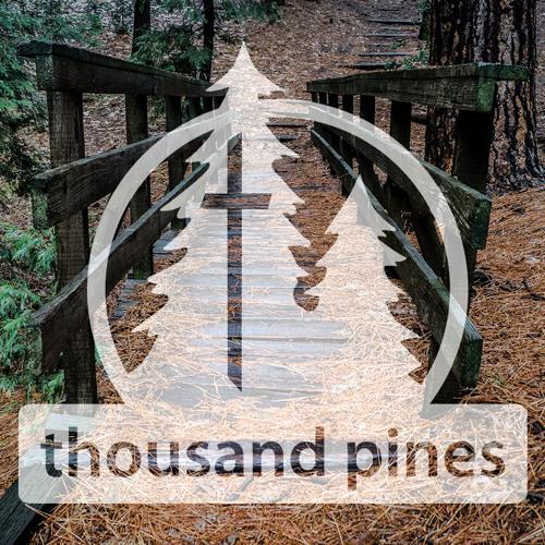 Thousand Pines's avatar