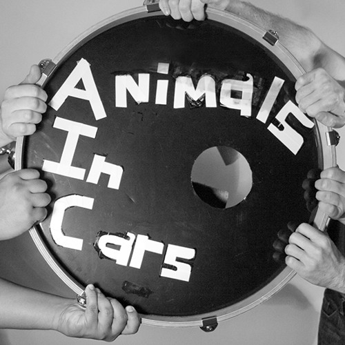 Animals in Cars's avatar