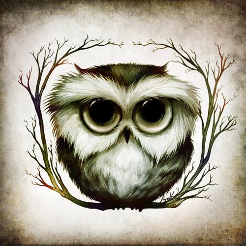 Owl RighT's avatar