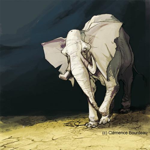 White Elephant's avatar