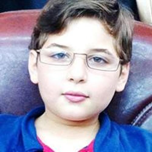 Ahmad Shreef Abusirrieh's avatar