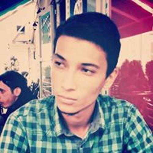 Mehmet Ünal Ertekin's avatar