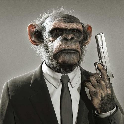 Darwin's avatar
