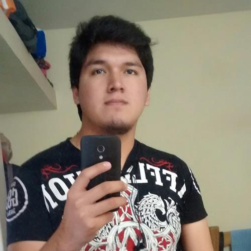 user704855788's avatar