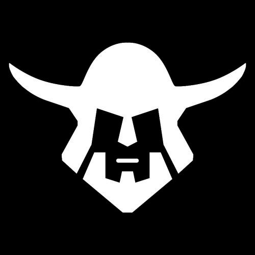 Viking's avatar