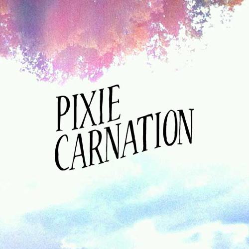 Pixie Carnation's avatar
