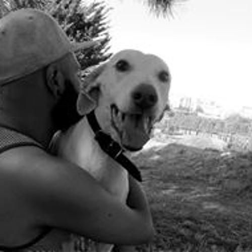 Bruno Filipe Dos Santos's avatar