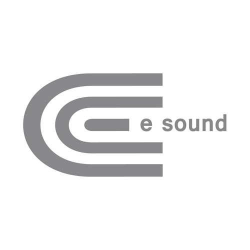 e sound records's avatar
